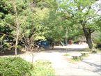 善福寺公園7